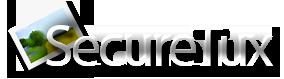 Securetux